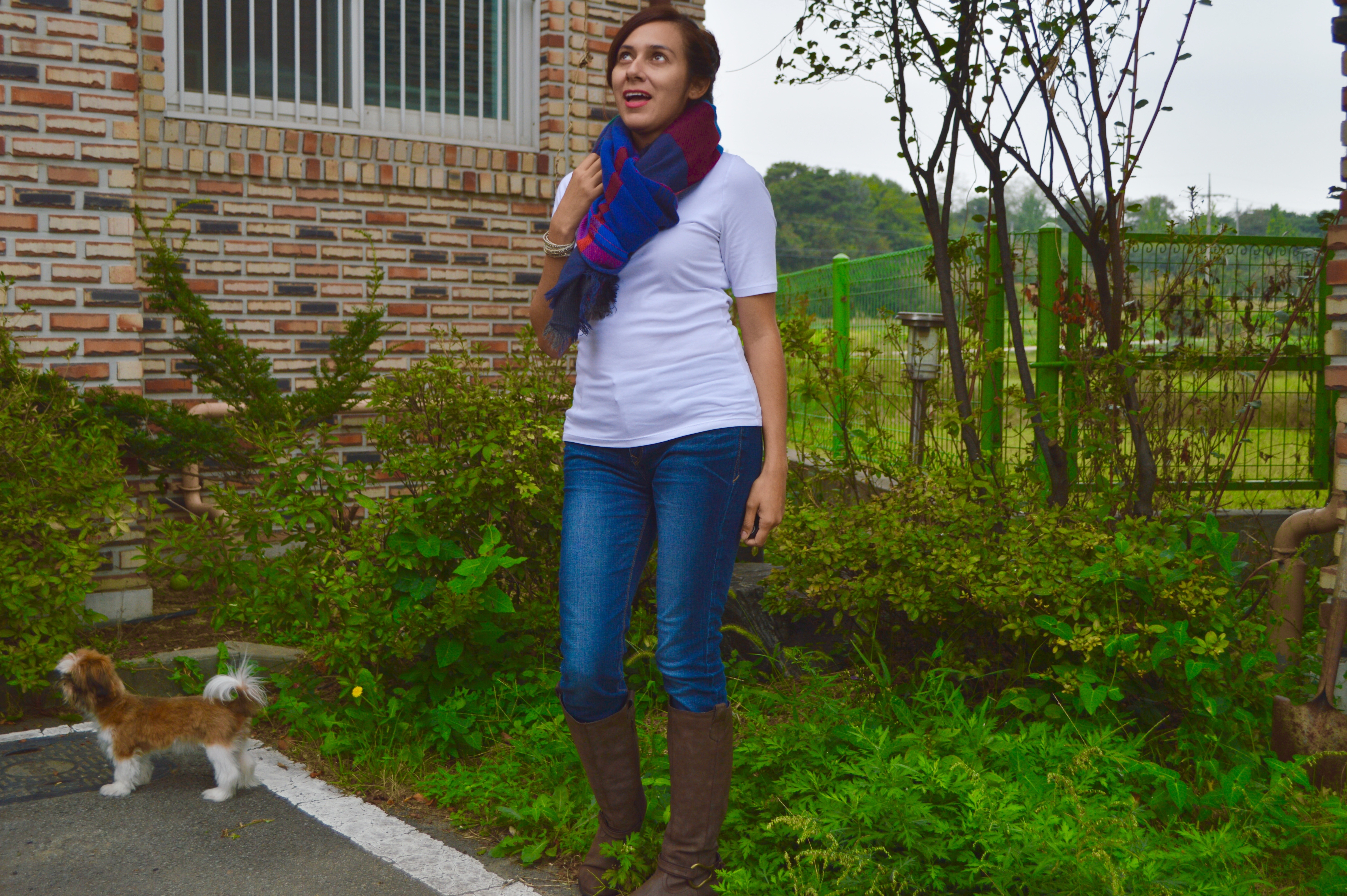 Blanket Scarves for Fall